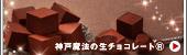 神戸魔法の生チョコレート・プレーン®(黒箱)