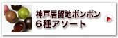 神戸居留地ボンボン6種アソート