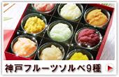 神戸フルーツソルベ 9種セット