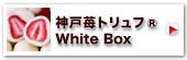 神戸苺トリュフ(白箱)