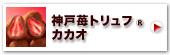 神戸苺トリュフ・カカオ