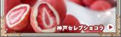 神戸セレブショコラ(白箱)