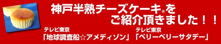 スイーツギフトには神戸フランツ ネット限定!TVで紹介、雑誌で紹介のプリンとチーズケーキのスイーツお試し福袋