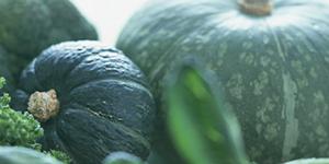 スイーツギフトは神戸フランツの魔法の壷プリン®・ホクホクパンプキン